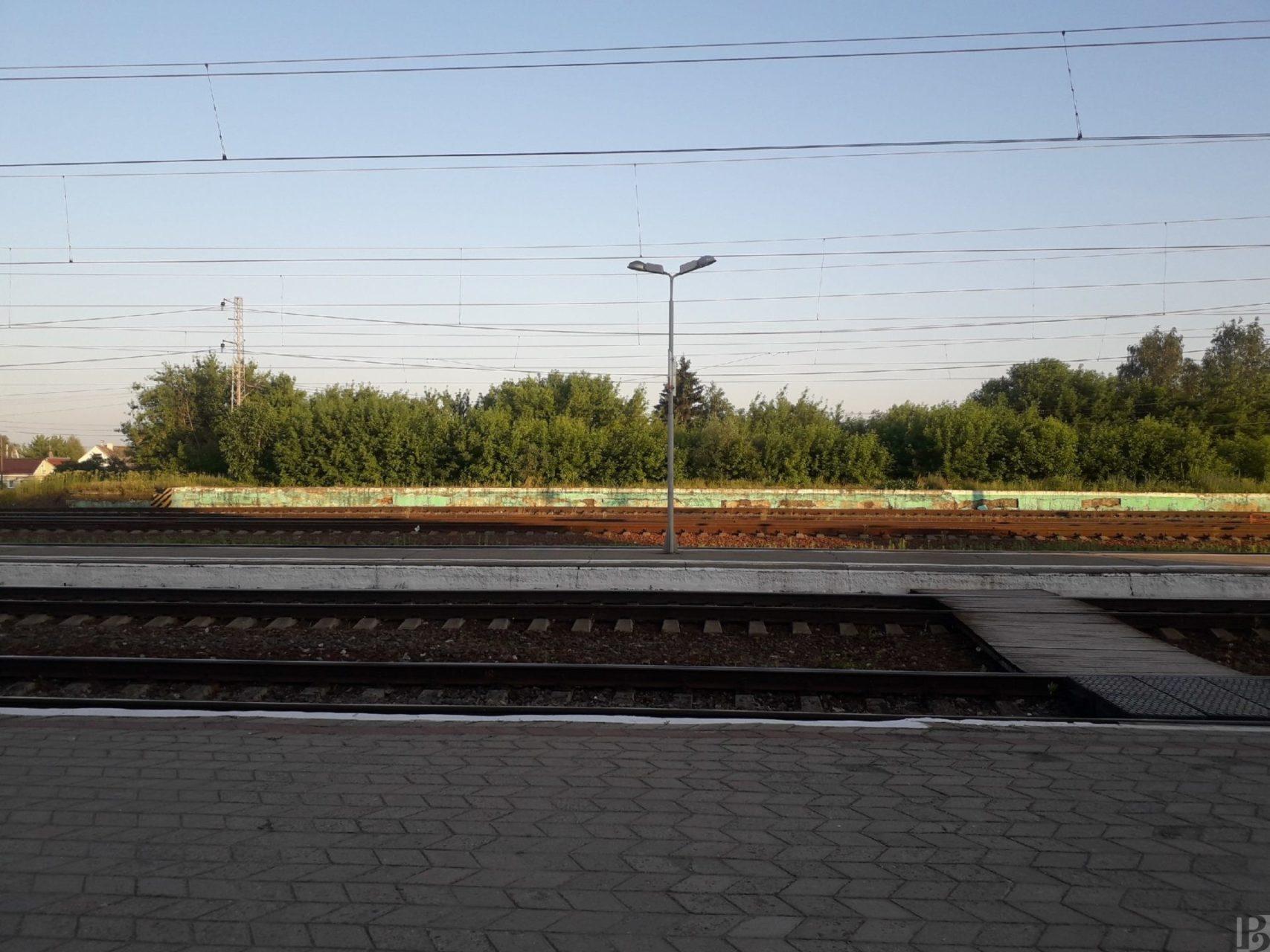 Стала известна обновленная статистика заболеваемости СOVID-19 в районах Рязанской области
