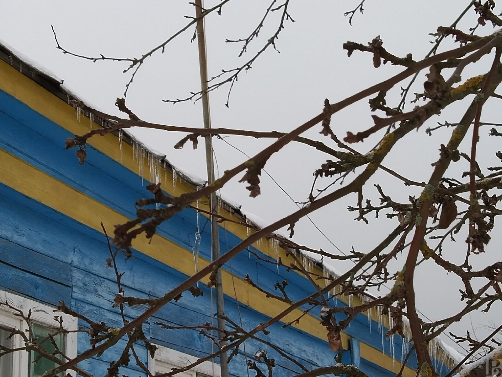 Завтра в Рязанской области будет морозно