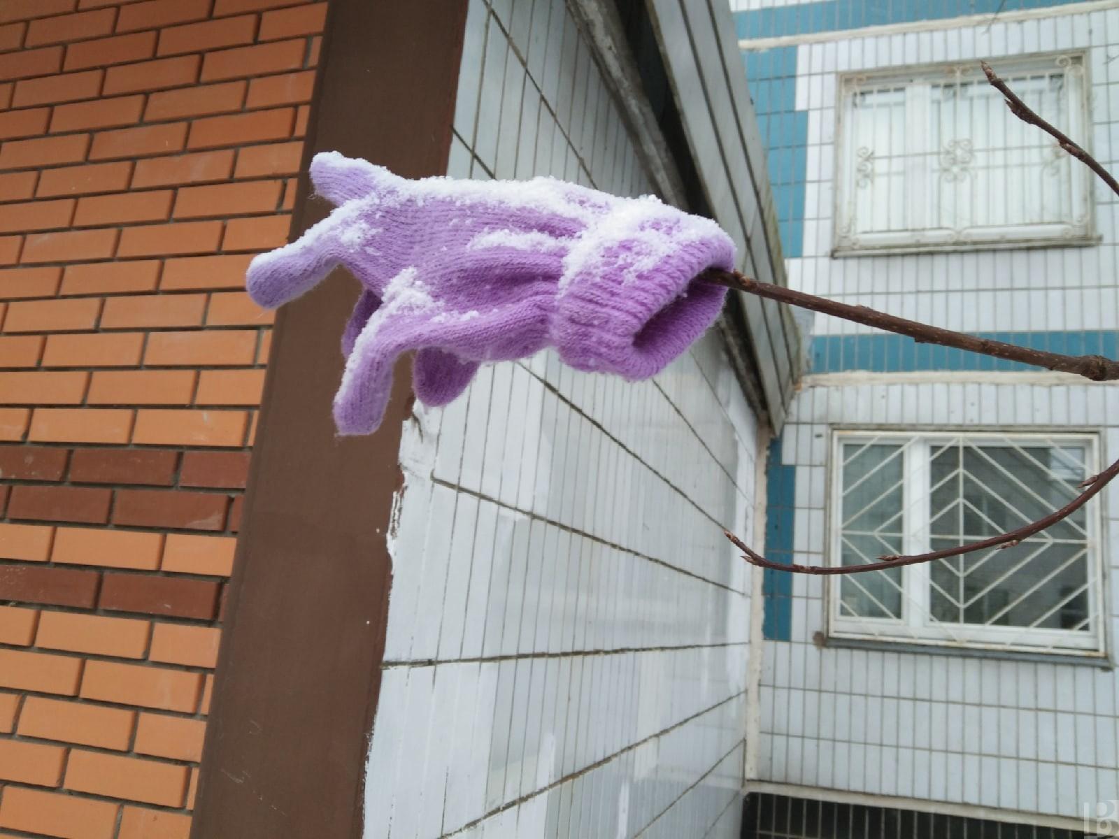 В Рязанской области весенняя погода уступила заморозкам
